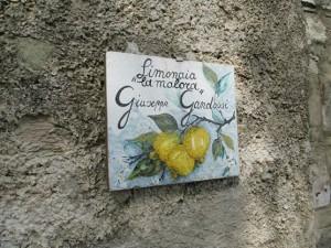 limonaia-4-300x225