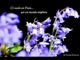 Kultowe włoskie piosenki dla dzieci