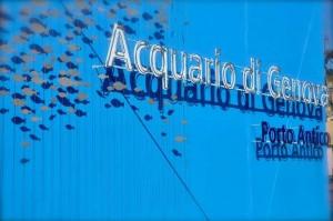 3677-acquario-genova-enatrata-622x413