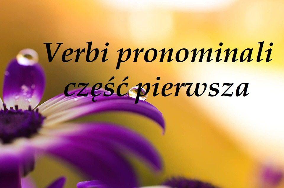 Verbi pronominali część pierwsza
