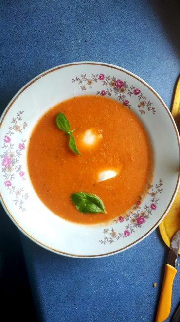 Zupa – krem z pomidorów