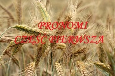 Pronomi część 1
